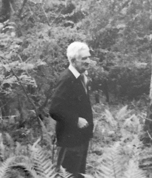 Philip Hart – Having retired. His dream wood in Dorset